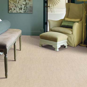 Caress Carpet by Shaw | Los Angeles, CA
